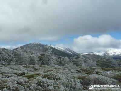 Siete Picos - Parque Nacional Cumbres del Guadarrama;rutas a pie por madrid rutas senderismo cercedi